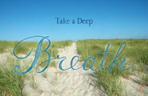 Take a Deep Breath, The Leader's Digest, by Suzi McAlpine