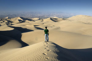 Walk your own path - The Leader's Digest, by Suzi McAlpine