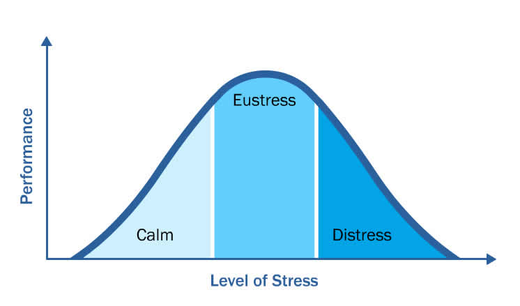 Stress curve and burnout - The Leader's Digest