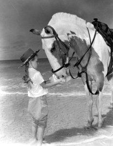 You can lead a horse to water but you can't make it drink - The Leader's Digest.