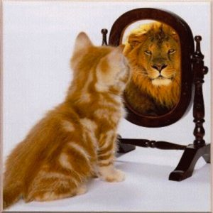 Self efficacy - The Leader's Digest