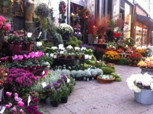 Flower stall Vienna.