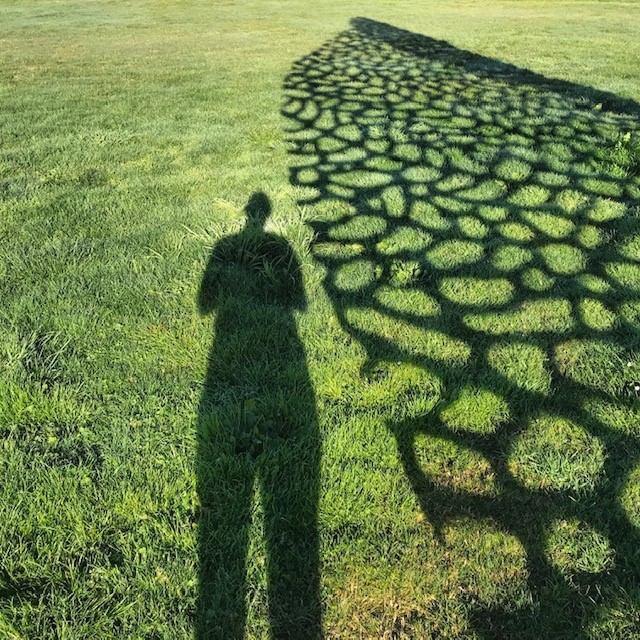 Shadow of a person on the grass